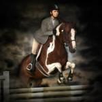 Horse For Sale - Ocala FL